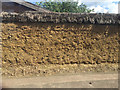 TL2697 : Thatched cob wall, West End, Whittlesey by Robin Stott