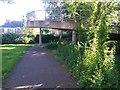 SZ0992 : Springbourne: footpath C22 approaches the footbridge by Chris Downer
