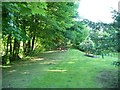 SO0288 : Former railway line, Llandinam by Christine Johnstone
