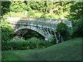 SO0288 : Llandinam Bridge, from the north-west by Christine Johnstone