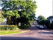 SZ0794 : Ensbury Park: footpath N08 follows Forsyth Gardens by Chris Downer