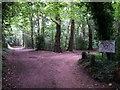 SZ0793 : Talbot Village: footpaths N09 and N11 meet by Chris Downer