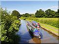 SJ4171 : Narrowboats on the Shropshire Union Canal by David Dixon