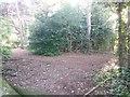 SZ0793 : Talbot Village: footpaths N12 and N40 meet by Chris Downer