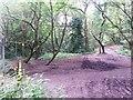 SZ0794 : Talbot Village: footpath N15 crosses Slades Lane and footpath N13 starts by Chris Downer