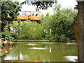 SJ4170 : Chester Zoo Monorail by David Dixon