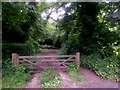 SZ0793 : Talbot Village: footpath N11 from White Farm Close by Chris Downer
