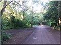 SZ0793 : Talbot Village: footpath N11 meets paths N15 and N12 by Chris Downer