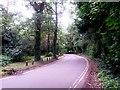 SZ0793 : Talbot Village: footpath N10 is the estate drive by Chris Downer