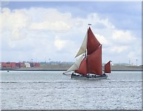 TQ7178 : Sailing barge in the Thames Estuary: 'Xylonite' off Lower Hope Point by Stefan Czapski