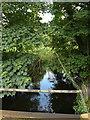 TL9383 : River Thet off Brettenham Road by Adrian Cable