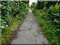 TA1132 : Hornsea Rail Trail #4 by Steve  Fareham