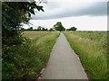 TA1234 : Hornsea Rail Trail #7 by Steve  Fareham