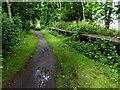 TA1537 : Hornsea Rail Trail #11 by Steve  Fareham