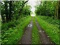 TA1944 : Hornsea Rail Trail #22 by Steve  Fareham