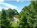 SE3222 : Rhubarb sheds by James Allan