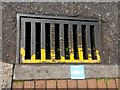 SZ0891 : Bournemouth: only rain down the drain by Chris Downer