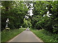 TL9882 : The Street, Gasthorpe by Adrian Cable