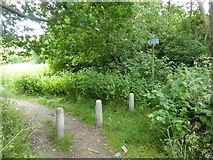 NZ4724 : Old cycle path on the edge of Billingham by Oliver Dixon