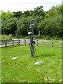 """NZ4725 : """"Toadstools"""" at Cowpen Bewley Woodland Park by Oliver Dixon"""