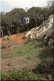 SX9065 : Cliff below chapel, Chapel Hill Pleasure Grounds by Derek Harper