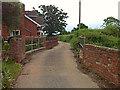 SX9886 : Rydon Lane: bridge over stream by Hugh Craddock
