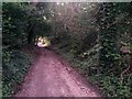 SZ0895 : Redhill: Sandy Way is a track at this point by Chris Downer