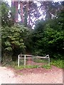 SZ0895 : Redhill: footpath O19 ascends from Sandy Way by Chris Downer