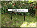 TM0179 : Hall Lane sign by Adrian Cable
