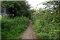 SE4922 : England Lane, Knottingley by Ian S