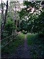 SZ1095 : Muscliff: looking west along bridleway M18 by Chris Downer