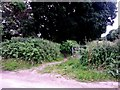SZ1096 : Muscliff: footpath M17 from Muscliffe Lane by Chris Downer