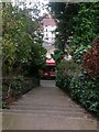 SZ1091 : Boscombe: steps on footpath F02 by Chris Downer