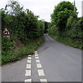 SS0698 : Warning sign - bends ahead on the B4585 towards the centre of Manorbier by Jaggery