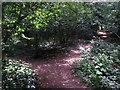 SZ0794 : Talbot Village: footpaths N10 and N37 meet by Chris Downer