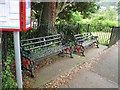 SD4178 : Grange-over-Sands: red squirrel benches by Stephen Craven