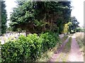 SZ0694 : Wallisdown: footpath N10 abuts the churchyard by Chris Downer
