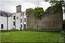 N5633 : Castles of Leinster: Ballybrittan, Co. Offaly (1) by Mike Searle
