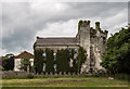 S7990 : Castles of Leinster: Bolton, Co. Kildare by Mike Searle