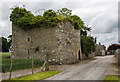 S7385 : Castles of Leinster: Castle Roe, Co. Kildare (1) by Mike Searle