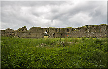 S7361 : Castles of Leinster: Ballymoon, Co. Carlow (1) by Mike Searle