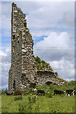 S7956 : Castles of Leinster: Rathnageeragh, Co. Carlow (2) by Mike Searle