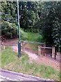 SZ0895 : Redhill: footpath O10 onto the common by Chris Downer