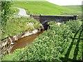 SN9071 : The new bridge, Pont ar Elan by Christine Johnstone