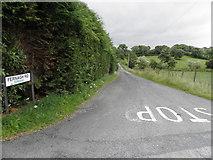 H5375 : Fernagh Road, Fernagh / Drumnakilly by Kenneth  Allen