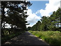 TL9183 : Kilverstone Road on Langmere Hill by Adrian Cable