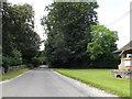 TL8984 : Kilverstone Road, Kilverstone by Adrian Cable