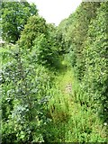 NY6920 : The railway to Penrith, at Cross Croft, Appleby by Christine Johnstone