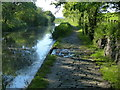 NT1070 : Cobbled section of towpath along the Union Canal by Mat Fascione