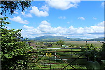 NX4355 : Farmland at Wigtown by Billy McCrorie